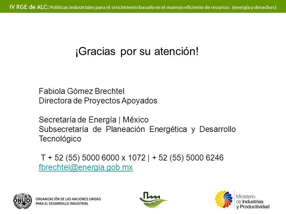 IV RGE de ALC: Políticas industriales para el crecimiento basado en el manejo eficiente de recursos (energía y desechos) ¡Gracias por su atención! Fab