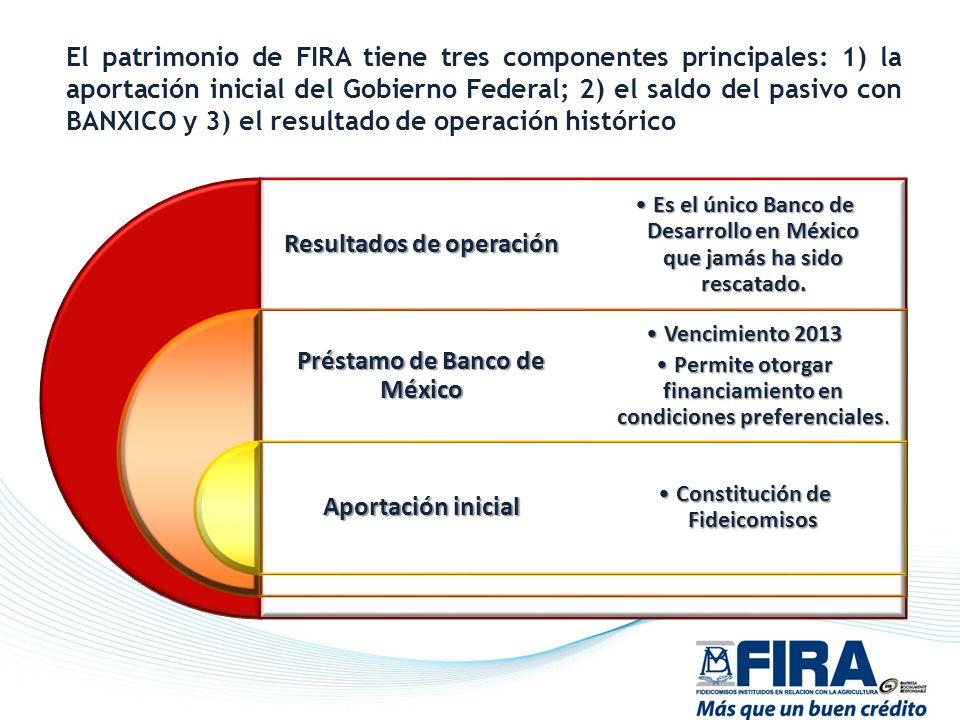 El patrimonio de FIRA tiene tres componentes principales: 1) la aportación inicial del Gobierno Federal; 2) el saldo del pasivo con BANXICO y 3) el re
