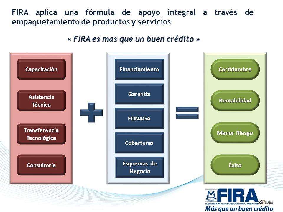 Capacitación Asistencia Técnica Transferencia Tecnológica Consultoría Financiamiento Garantía FONAGA Coberturas Certidumbre Rentabilidad Menor Riesgo