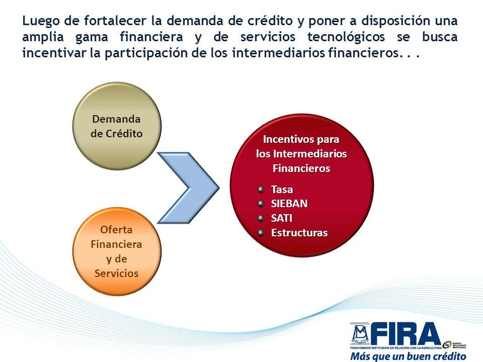 Demanda de Crédito Oferta Financiera y de Servicios Incentivos para los Intermediarios Financieros TasaSIEBANSATIEstructuras Luego de fortalecer la de