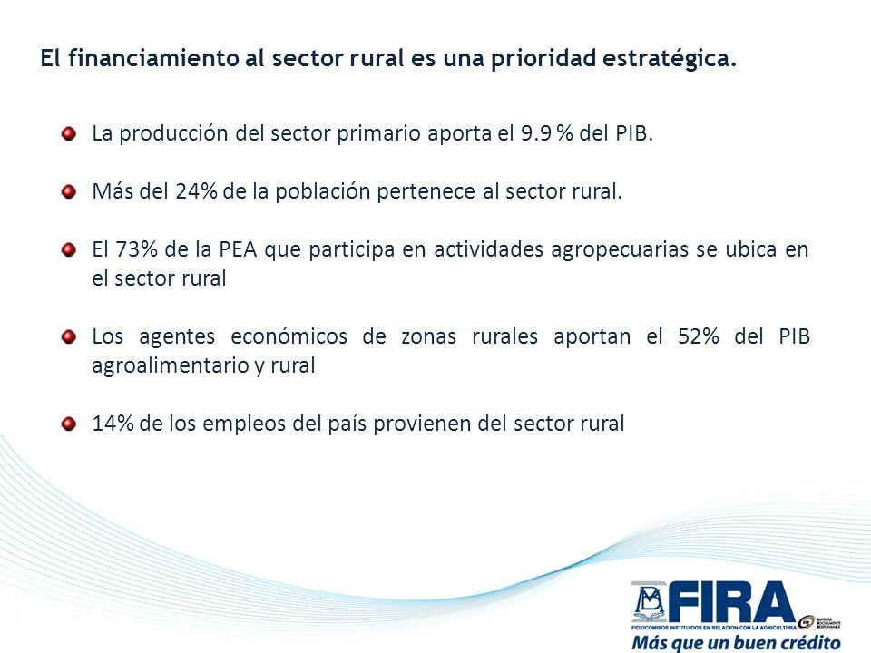 La producción del sector primario aporta el 9.9 % del PIB. Más del 24% de la población pertenece al sector rural. El 73% de la PEA que participa en ac