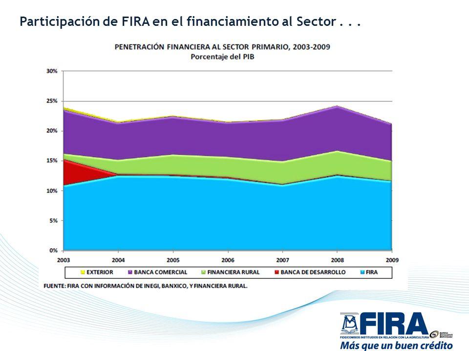 Participación de FIRA en el financiamiento al Sector...