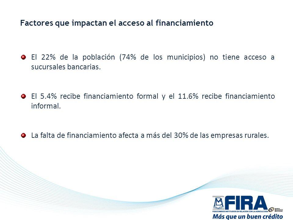 El 22% de la población (74% de los municipios) no tiene acceso a sucursales bancarias. El 5.4% recibe financiamiento formal y el 11.6% recibe financia