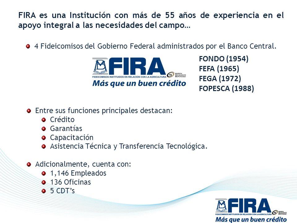 FIRA es una Institución con más de 55 años de experiencia en el apoyo integral a las necesidades del campo… 4 Fideicomisos del Gobierno Federal admini