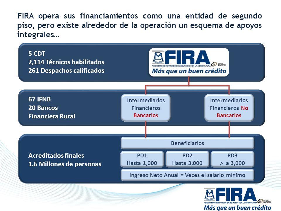 FIRA opera sus financiamientos como una entidad de segundo piso, pero existe alrededor de la operación un esquema de apoyos integrales… 5 CDT 2,114 Té