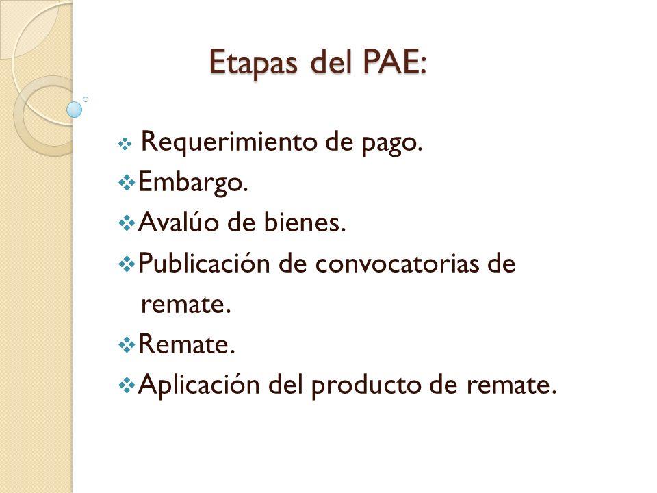 Etapas del PAE: Requerimiento de pago. Embargo. Avalúo de bienes. Publicación de convocatorias de remate. Remate. Aplicación del producto de remate.