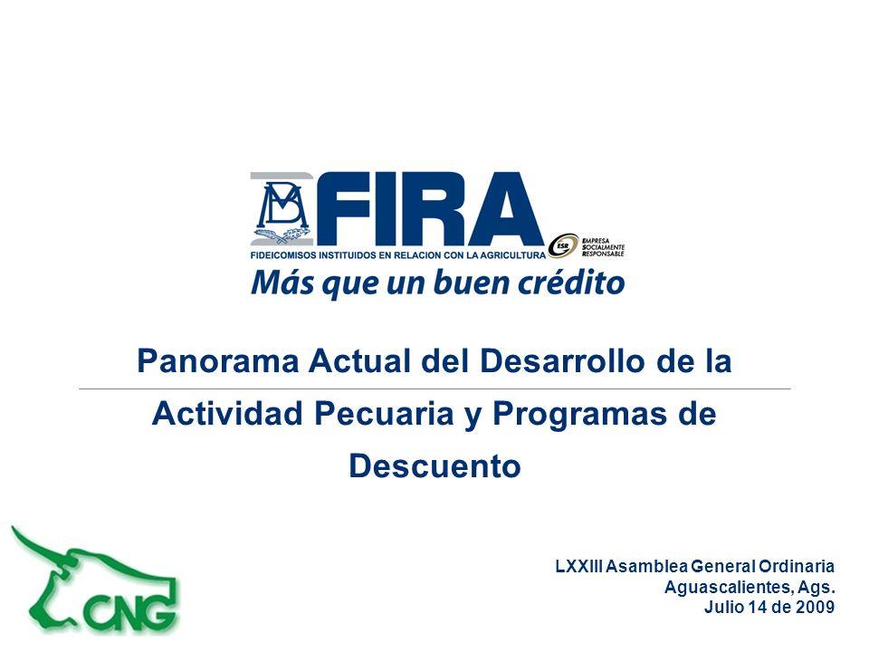 Panorama Actual del Desarrollo de la Actividad Pecuaria y Programas de Descuento LXXIII Asamblea General Ordinaria Aguascalientes, Ags.