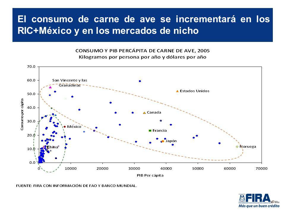 El consumo de carne de ave se incrementará en los RIC+México y en los mercados de nicho