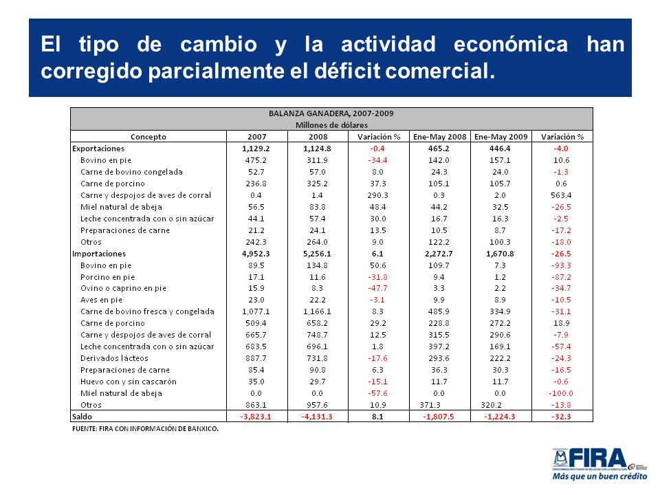 El tipo de cambio y la actividad económica han corregido parcialmente el déficit comercial.