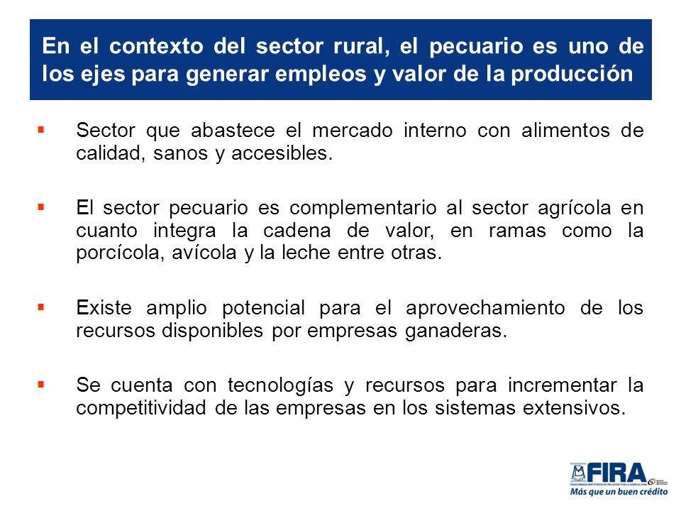 Sector que abastece el mercado interno con alimentos de calidad, sanos y accesibles.