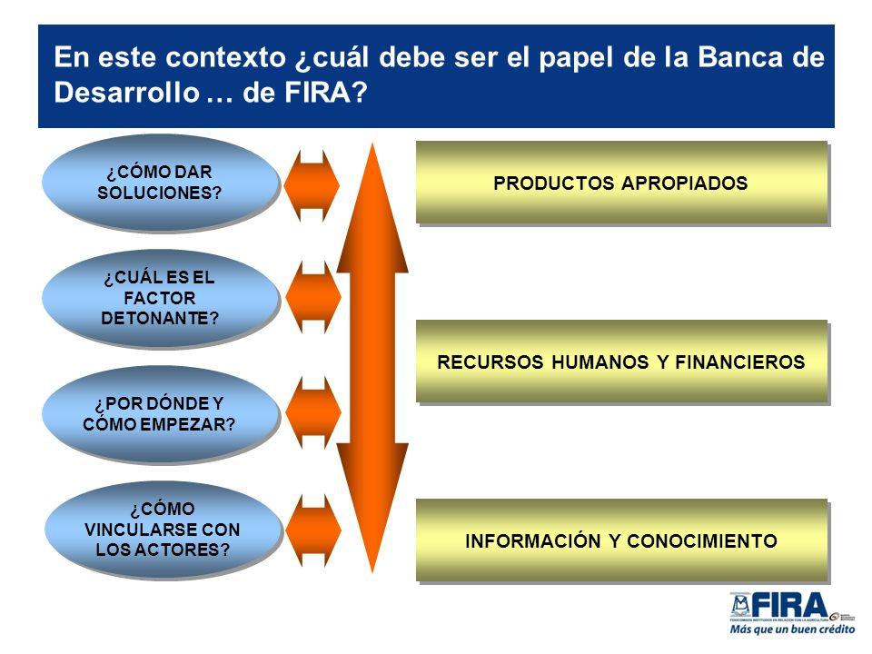 En este contexto ¿cuál debe ser el papel de la Banca de Desarrollo … de FIRA.