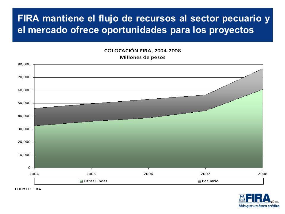 FIRA mantiene el flujo de recursos al sector pecuario y el mercado ofrece oportunidades para los proyectos