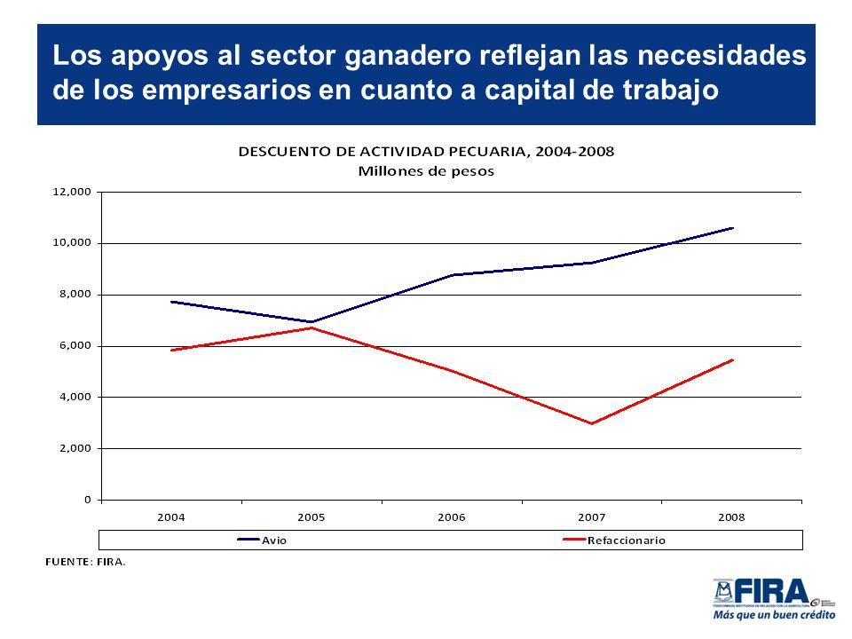 Los apoyos al sector ganadero reflejan las necesidades de los empresarios en cuanto a capital de trabajo