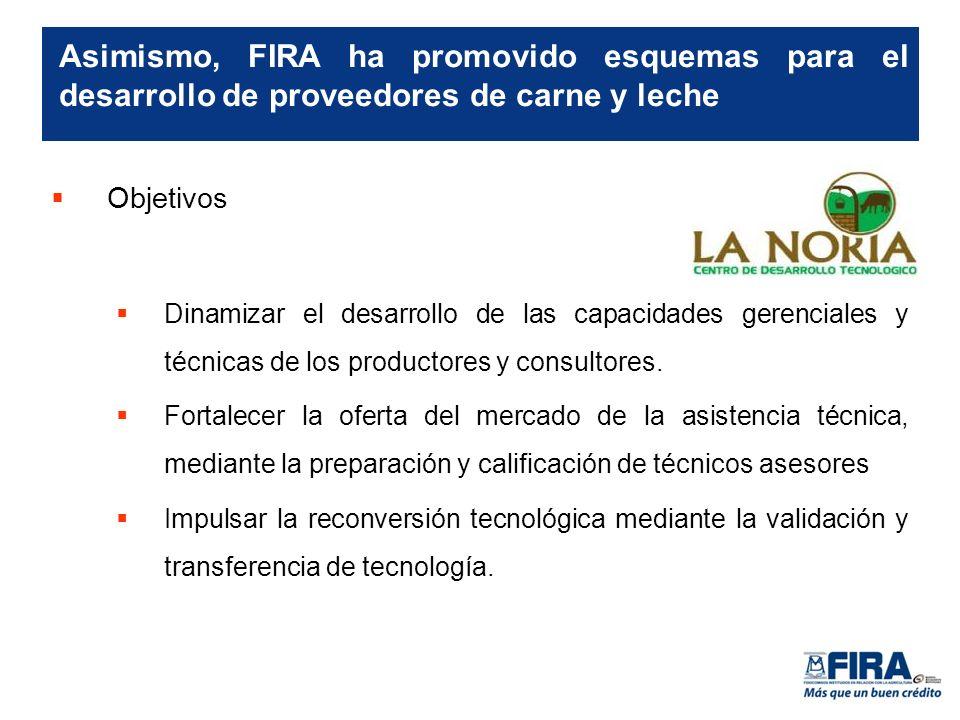 Objetivos Dinamizar el desarrollo de las capacidades gerenciales y técnicas de los productores y consultores.