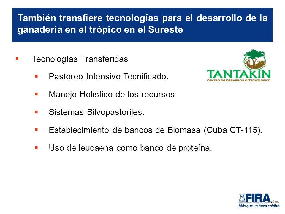 Tecnologías Transferidas Pastoreo Intensivo Tecnificado.