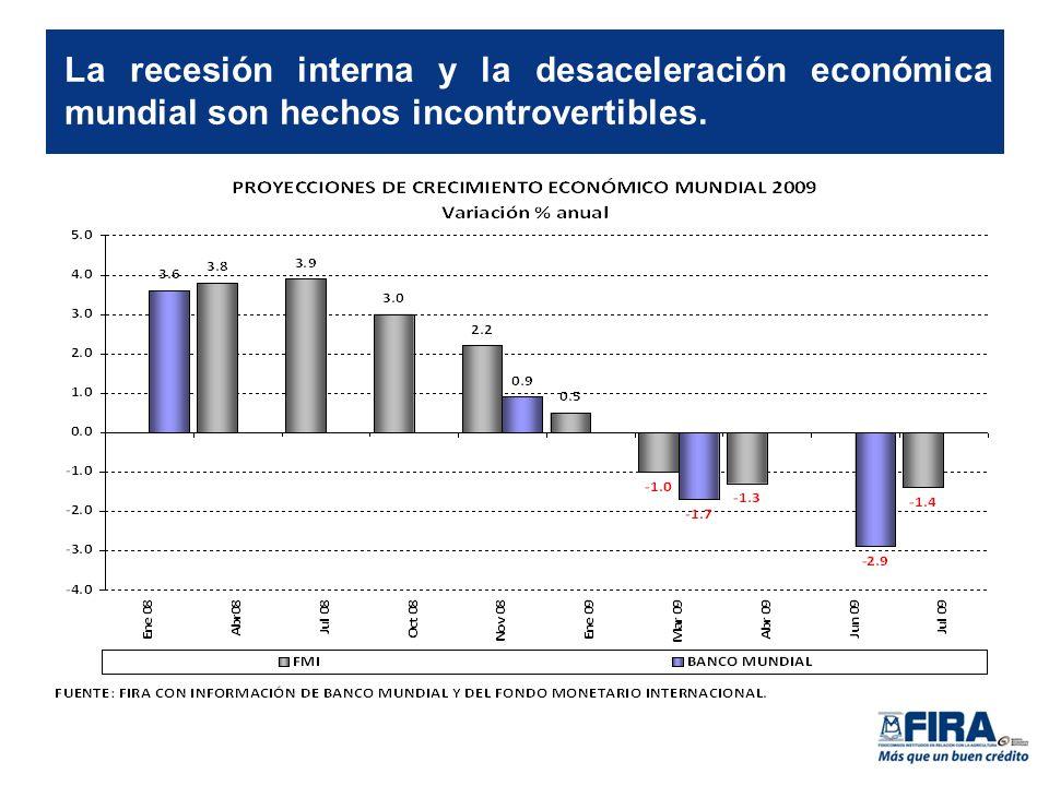 La recesión interna y la desaceleración económica mundial son hechos incontrovertibles.