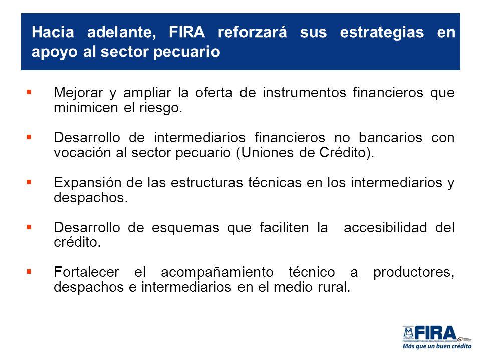Hacia adelante, FIRA reforzará sus estrategias en apoyo al sector pecuario Mejorar y ampliar la oferta de instrumentos financieros que minimicen el riesgo.