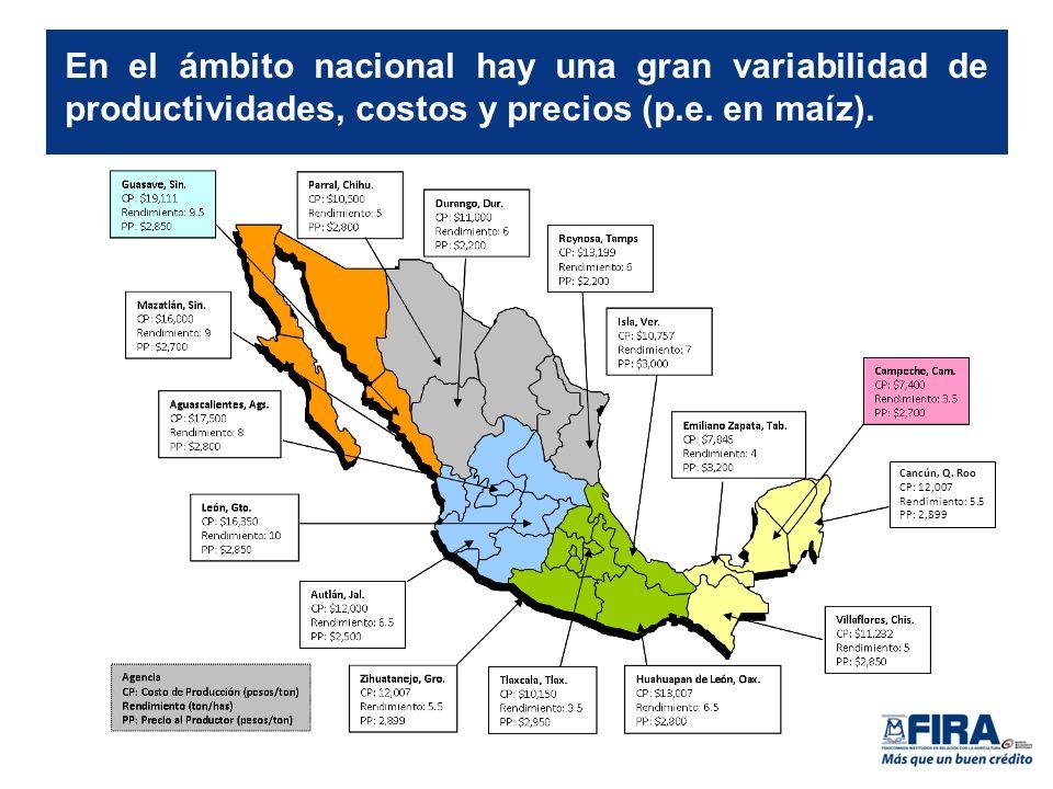 En el ámbito nacional hay una gran variabilidad de productividades, costos y precios (p.e.