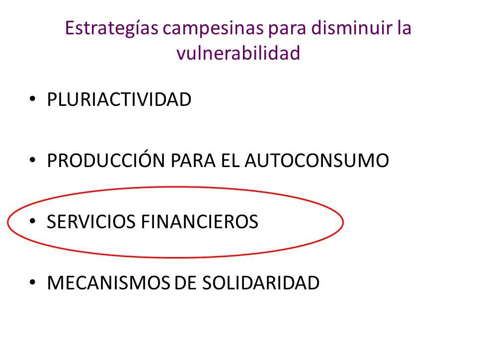 PLURIACTIVIDAD PRODUCCIÓN PARA EL AUTOCONSUMO SERVICIOS FINANCIEROS MECANISMOS DE SOLIDARIDAD Estrategías campesinas para disminuir la vulnerabilidad
