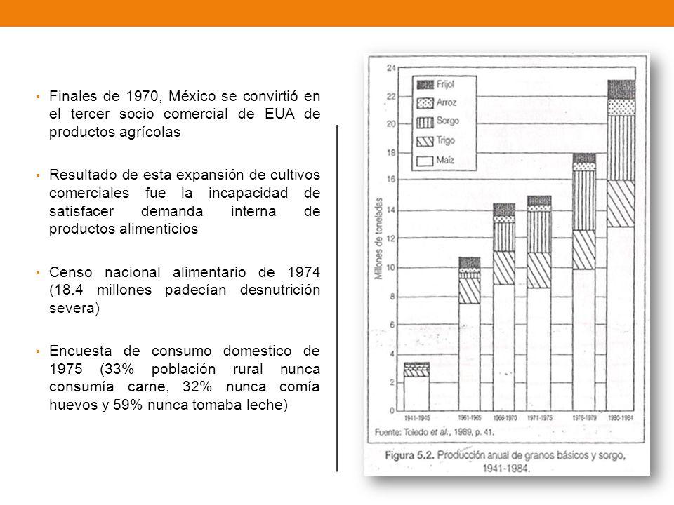Trigo y riqueza, maíz y miseria Trigo En la década de 1970 La producción + De 455 000 ha.