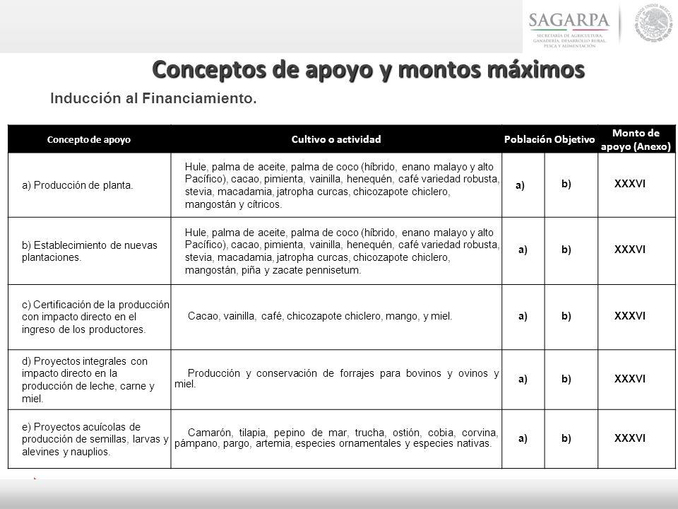 Concepto de apoyo Cultivo o actividadPoblación Objetivo Monto de apoyo (Anexo) a) Producción de planta. Hule, palma de aceite, palma de coco (híbrido,