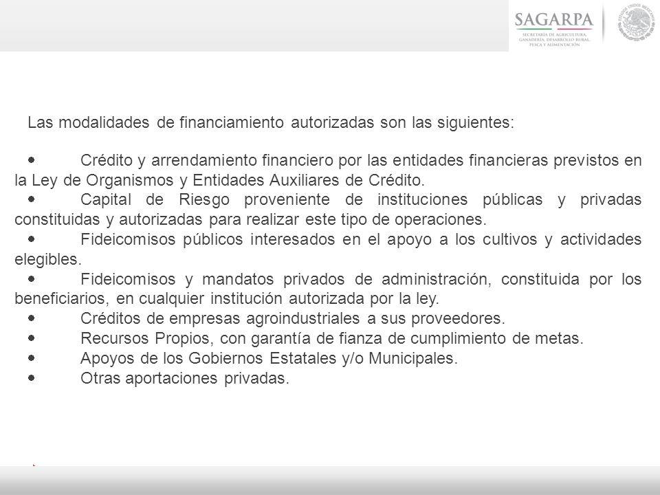 Las modalidades de financiamiento autorizadas son las siguientes: Crédito y arrendamiento financiero por las entidades financieras previstos en la Ley