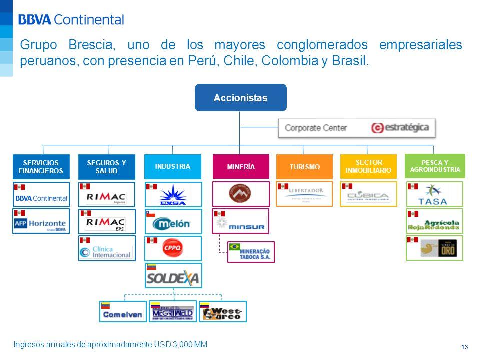 13 Grupo Brescia, uno de los mayores conglomerados empresariales peruanos, con presencia en Perú, Chile, Colombia y Brasil. Accionistas SERVICIOS FINA