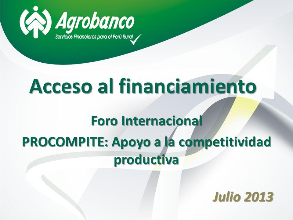 Acceso al financiamiento Julio 2013 Foro Internacional PROCOMPITE: Apoyo a la competitividad productiva