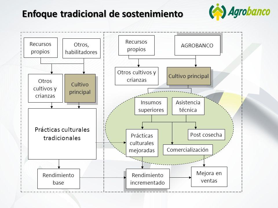 Recursos propios AGROBANCO Cultivo principal Otros cultivos y crianzas Recursos propios Otros, habilitadores Prácticas culturales tradicionales Rendim