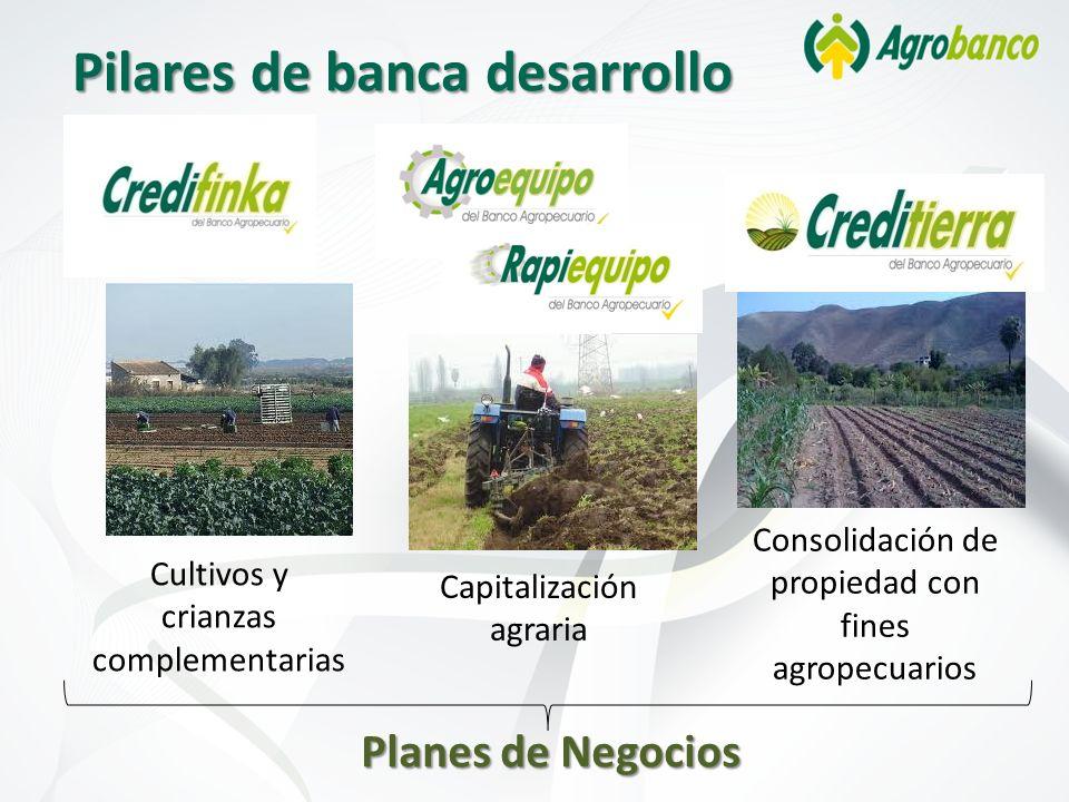 Pilares de banca desarrollo Cultivos y crianzas complementarias Capitalización agraria Consolidación de propiedad con fines agropecuarios Planes de Ne