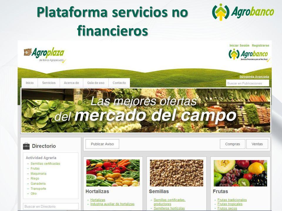 Plataforma servicios no financieros
