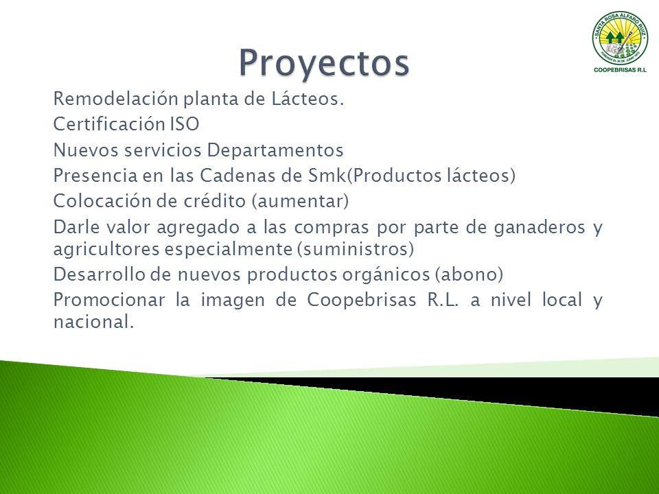 Remodelación planta de Lácteos. Certificación ISO Nuevos servicios Departamentos Presencia en las Cadenas de Smk(Productos lácteos) Colocación de créd