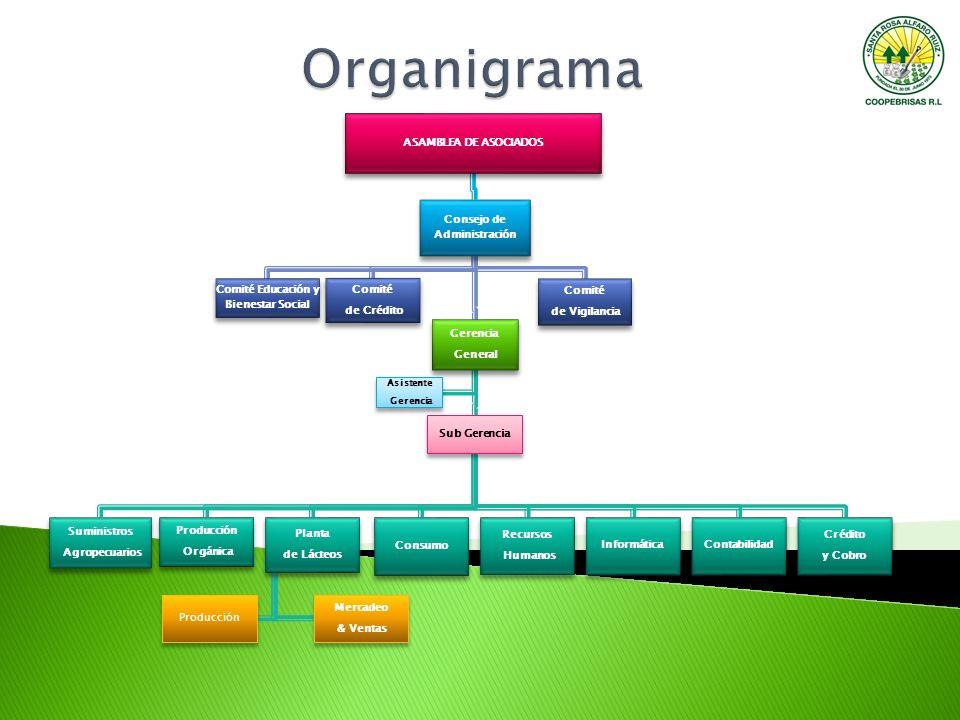 ASAMBLEA DE ASOCIADOS Consejo de Administración Gerencia General Sub Gerencia Suministros Agropecuarios Planta de Lácteos Mercadeo & Ventas Producción
