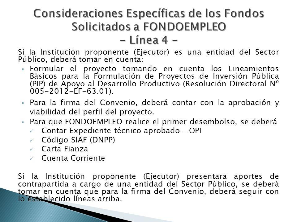 Si la Institución proponente (Ejecutor) es una entidad del Sector Público, deberá tomar en cuenta: Formular el proyecto tomando en cuenta los Lineamie