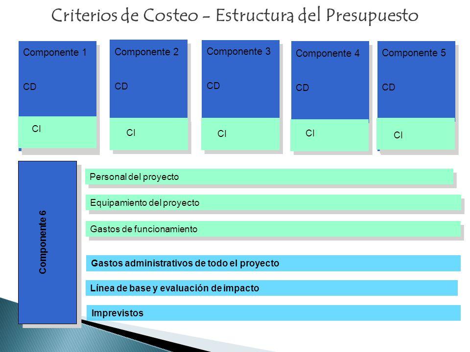 Personal del proyecto Equipamiento del proyecto Gastos de funcionamiento Gastos administrativos de todo el proyecto Línea de base y evaluación de impa