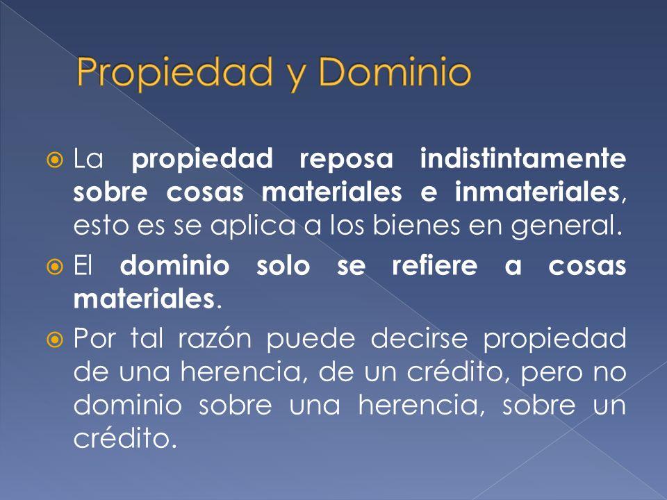 La propiedad reposa indistintamente sobre cosas materiales e inmateriales, esto es se aplica a los bienes en general.