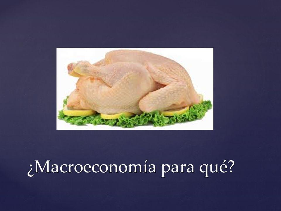 ¿Macroeconomía para qué