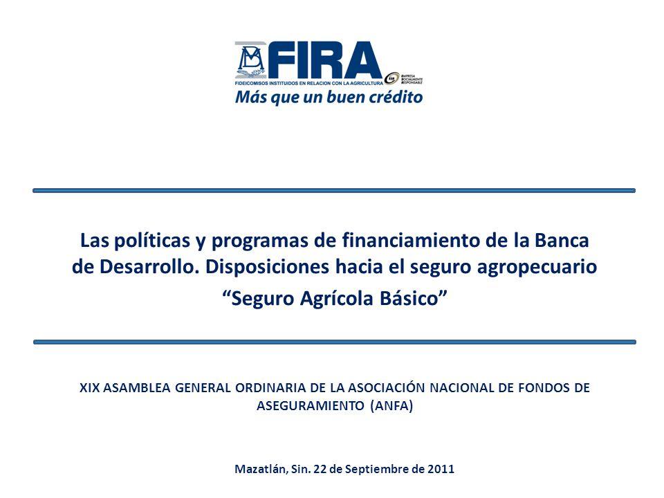 Las políticas y programas de financiamiento de la Banca de Desarrollo. Disposiciones hacia el seguro agropecuario Seguro Agrícola Básico XIX ASAMBLEA