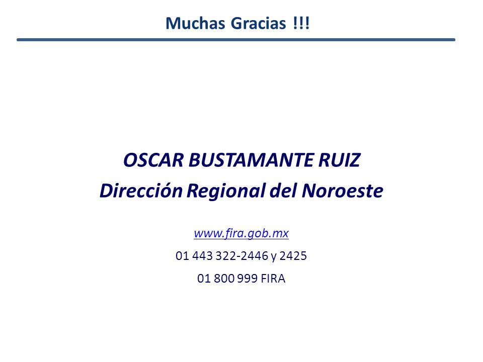 OSCAR BUSTAMANTE RUIZ Dirección Regional del Noroeste www.fira.gob.mx 01 443 322-2446 y 2425 01 800 999 FIRA Muchas Gracias !!!