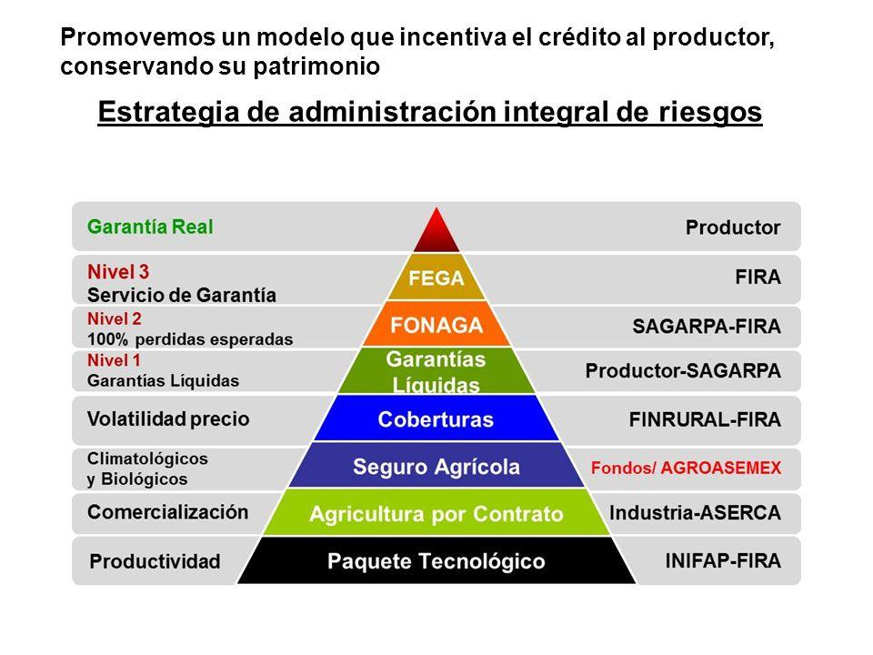 Estrategia de administración integral de riesgos Promovemos un modelo que incentiva el crédito al productor, conservando su patrimonio
