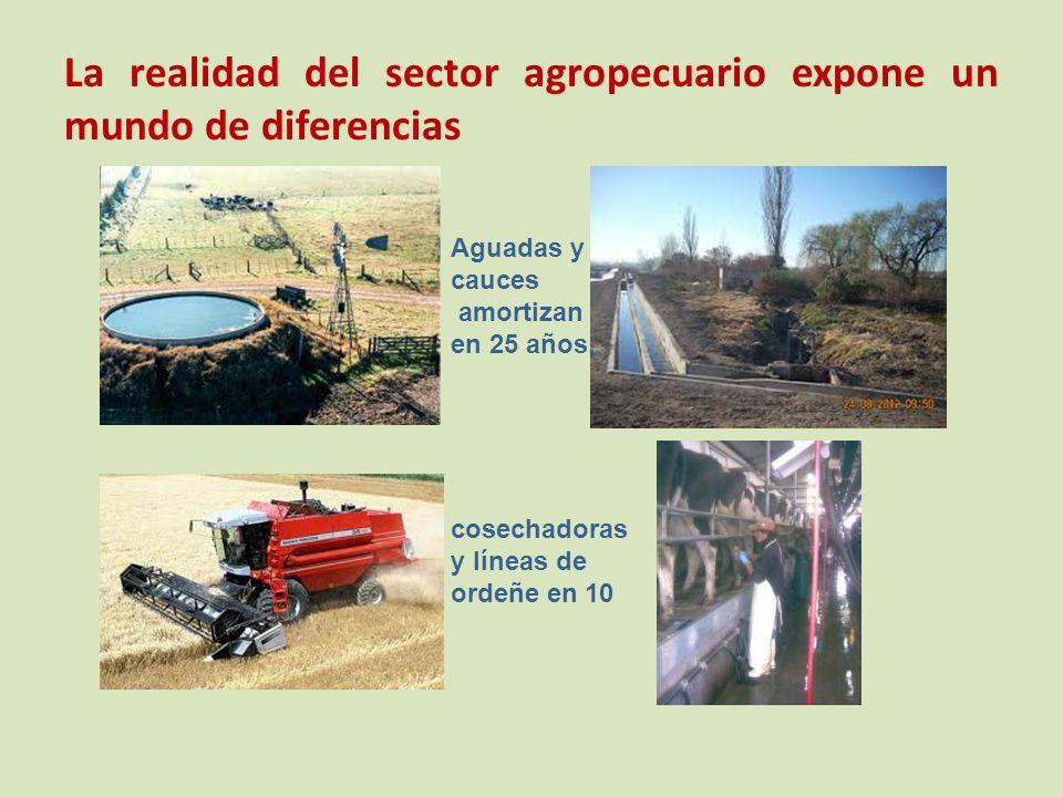 La realidad del sector agropecuario expone un mundo de diferencias Aguadas y cauces amortizan en 25 años, cosechadoras y líneas de ordeñe en 10