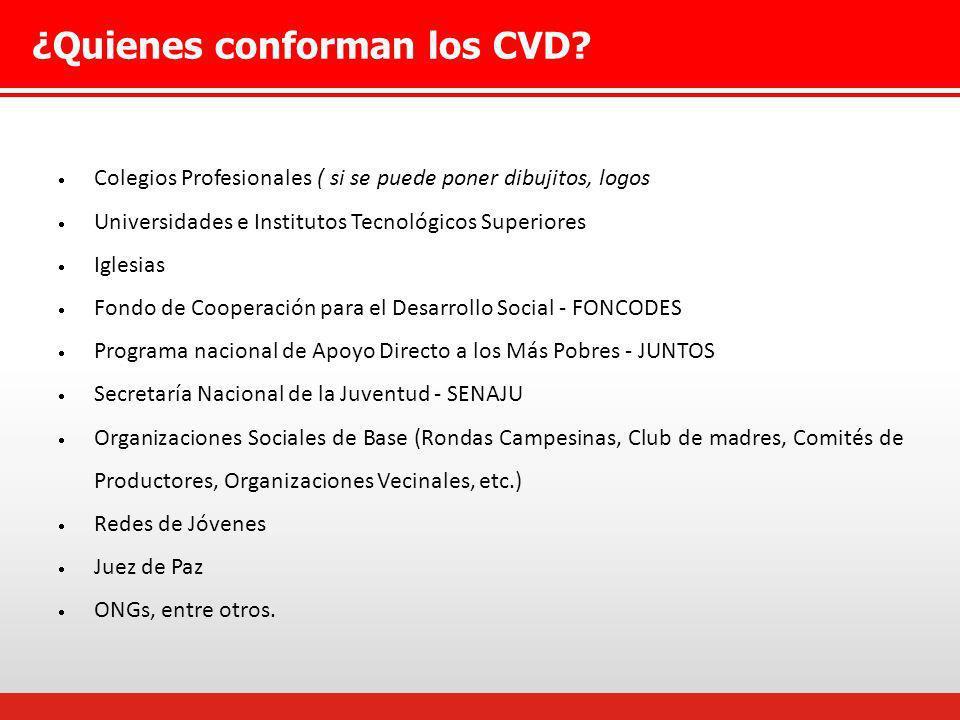 Proceso de conformación del CVD El Coordinador del Equipo Regional y el Especialista en Beca 18 se reúnen con instituciones de la sociedad civil donde se explica la función del CVD.