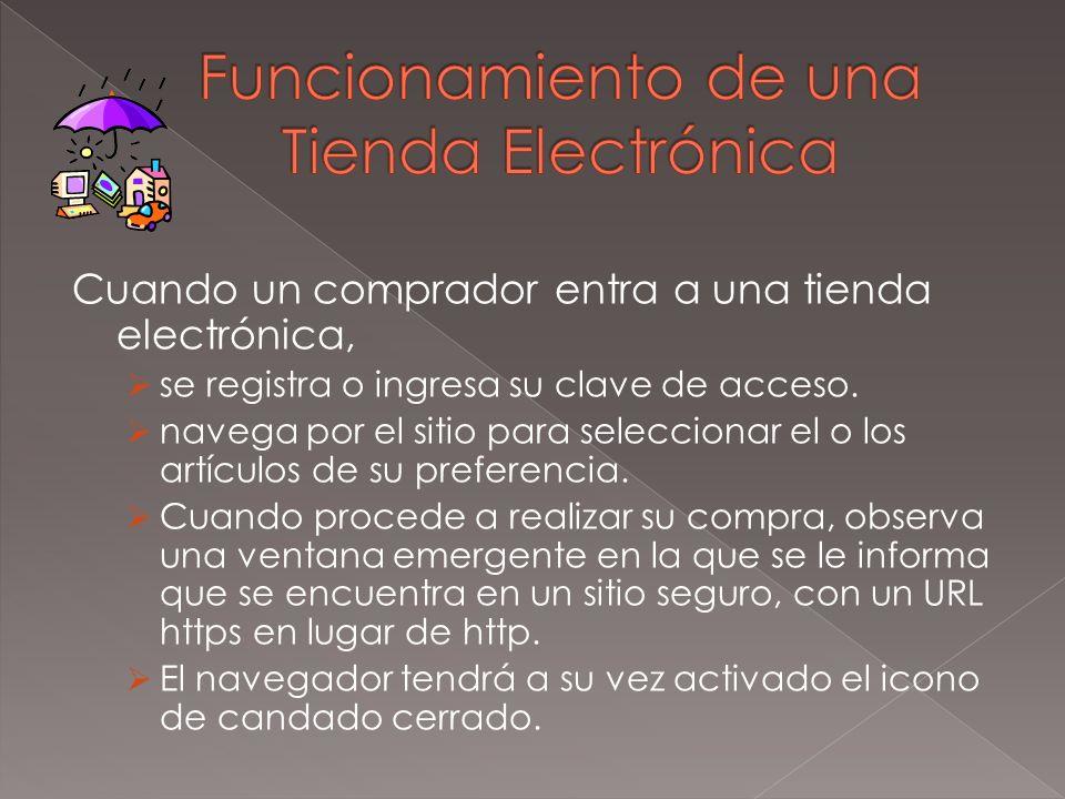 Para poder tener una Tienda Electrónica hay que conocer todas las normas existentes de seguridad del vendedor y comprador.