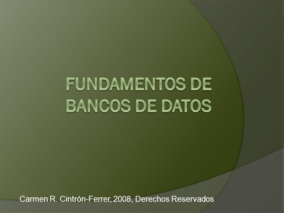 Carmen R. Cintrón-Ferrer, 2008, Derechos Reservados