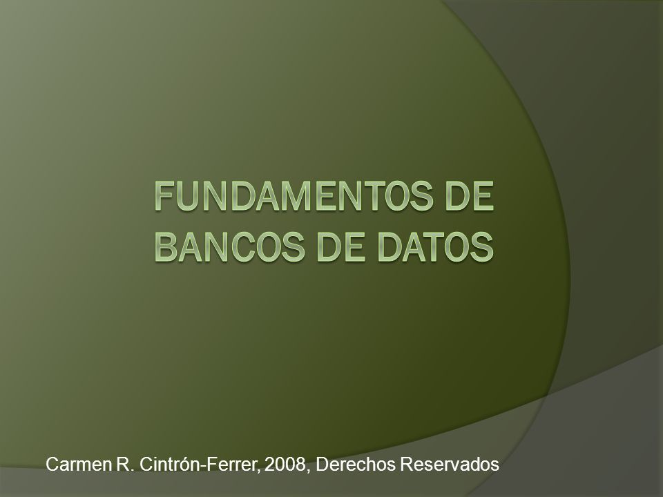 Carmen R. Cintrón Ferrer, 2008, Derechos Reservados2 Módulo VIII