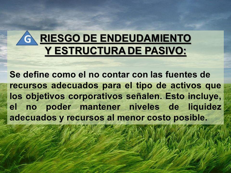 RIESGO DE ENDEUDAMIENTO Y ESTRUCTURA DE PASIVO: Se define como el no contar con las fuentes de recursos adecuados para el tipo de activos que los obje