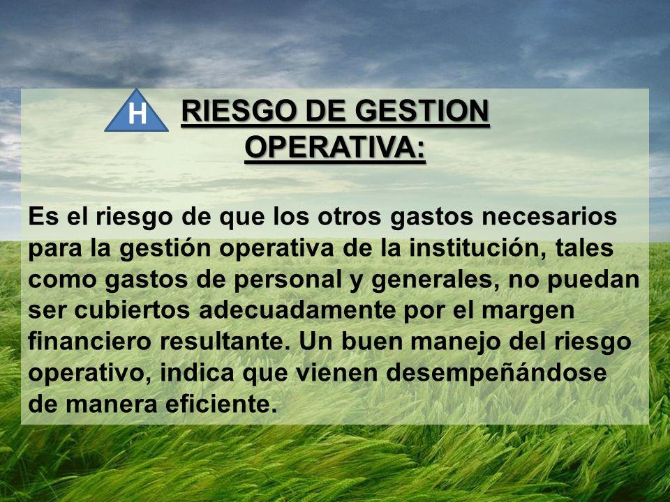 RIESGO DE GESTION OPERATIVA: Es el riesgo de que los otros gastos necesarios para la gestión operativa de la institución, tales como gastos de persona