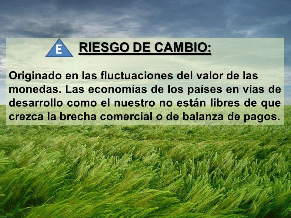 RIESGO DE CAMBIO: Originado en las fluctuaciones del valor de las monedas. Las economías de los países en vías de desarrollo como el nuestro no están