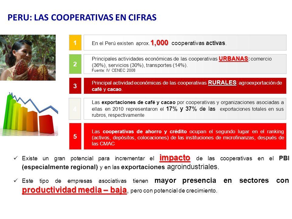 impacto Existe un gran potencial para incrementar el impacto de las cooperativas en el PBI (especialmente regional) y en las exportaciones agroindustr