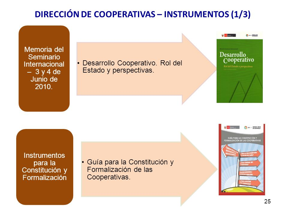 Desarrollo Cooperativo. Rol del Estado y perspectivas. Memoria del Seminario Internacional – 3 y 4 de Junio de 2010. Guía para la Constitución y Forma